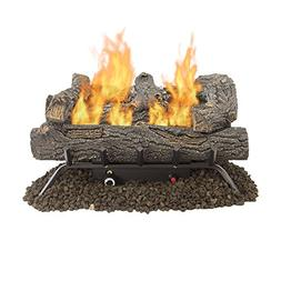 24 in. Vent Free Natural Gas Propane Fireplace Log Set Inser